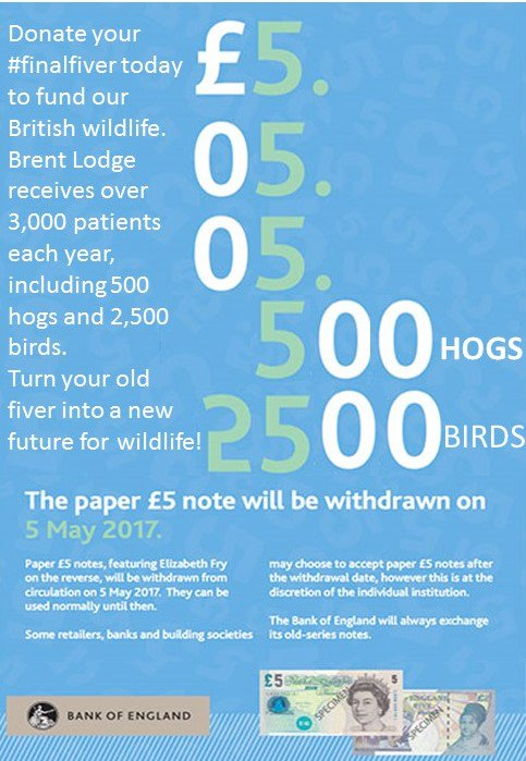 test Twitter Media - Donate your old £5 to make a new future for #wildlife today. Make your #finalfiver count and donate to @brentlodge https://t.co/0SU2dRvAmn https://t.co/ic3JOxMdkX