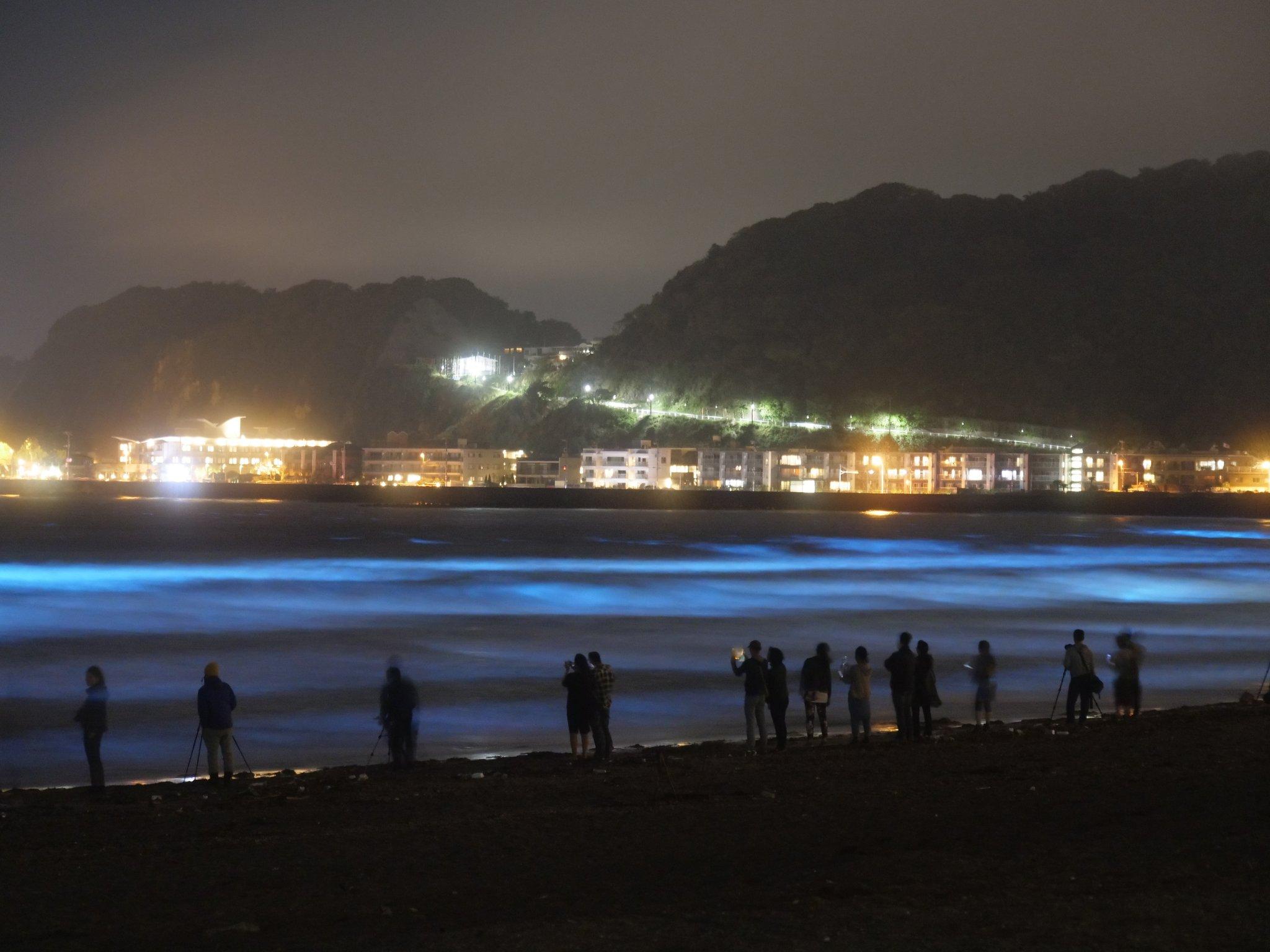 何これ!?由比ヶ浜に出現した幻想的な光についてwww