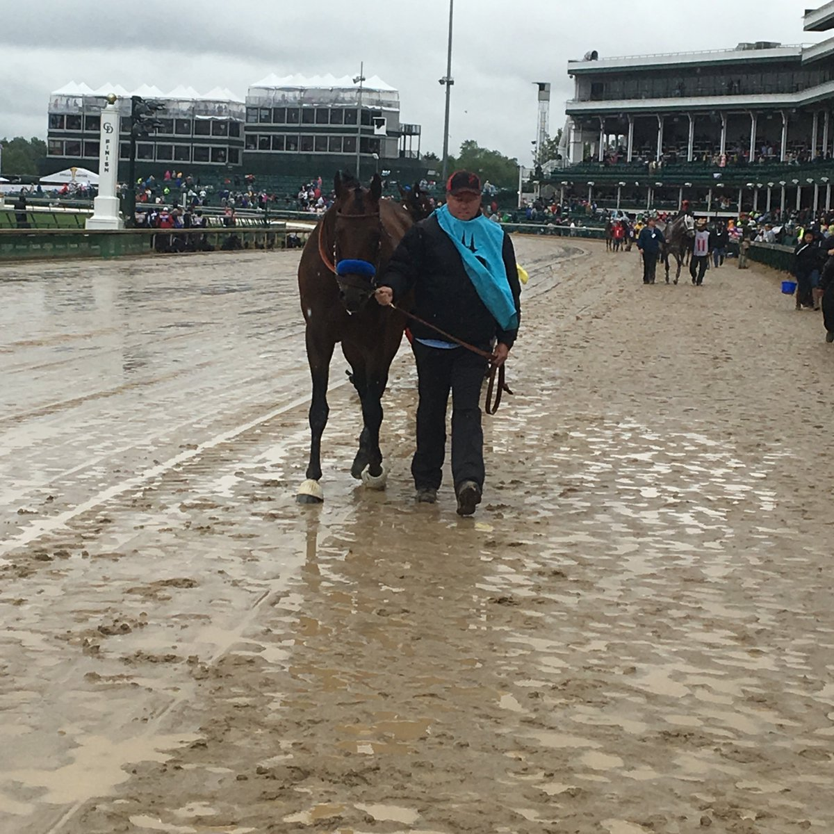 Headed into the paddock for the #Alysheba is #AmericanFreedom, #NobleBird and #BreakingLucky @jordan_sigmon_<br>http://pic.twitter.com/Ii0wUQVnaY