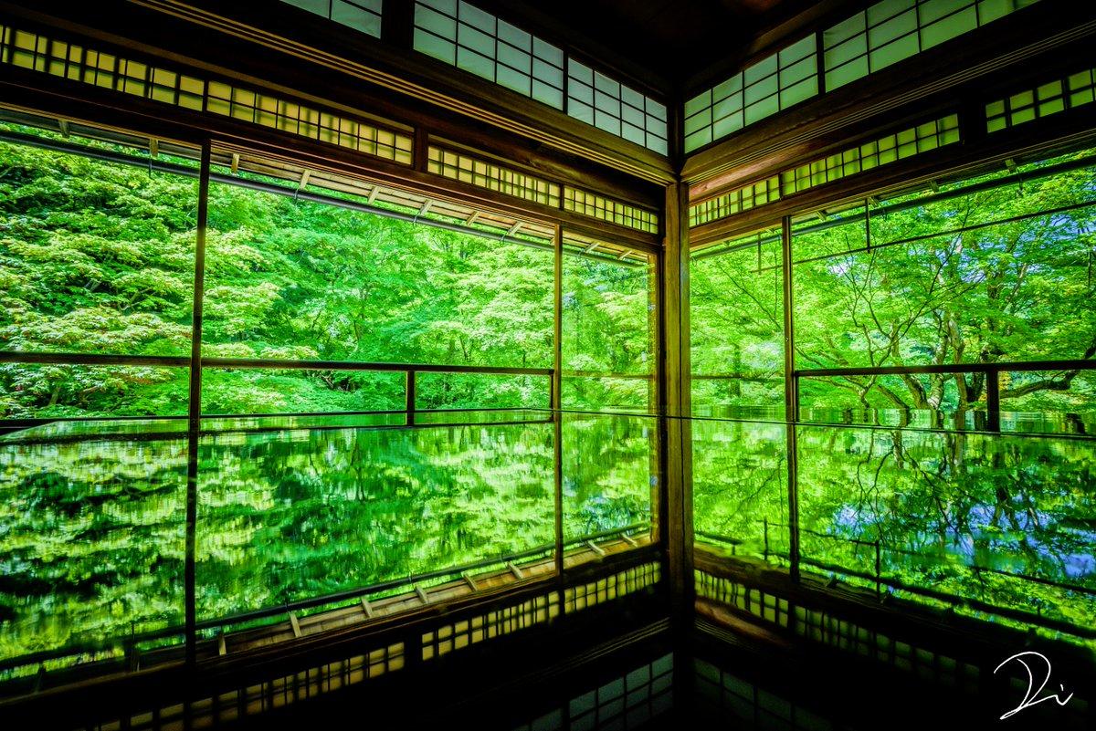 『新緑の瑠璃光院、鏡面世界』 pic.twitter.com/wuwUgILFyr