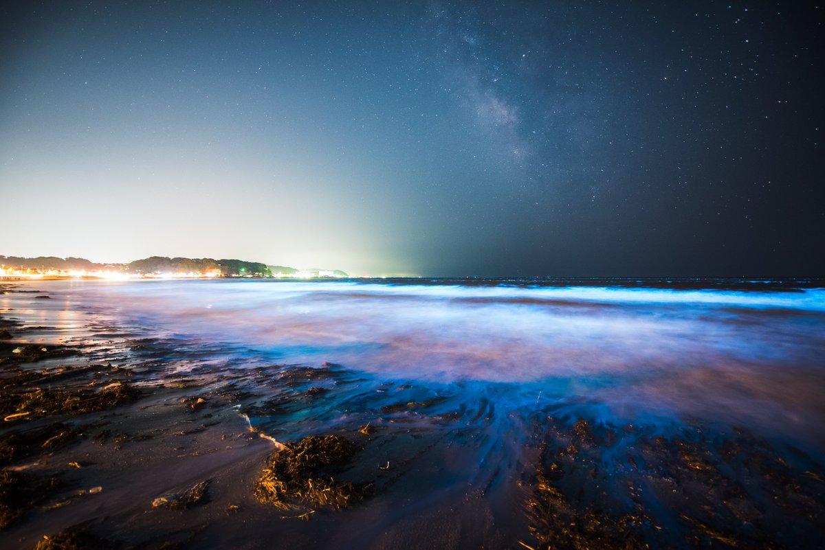 鎌倉の由比ヶ浜で 夜光虫と天の川と流星の共演。小さいですが幾つか流星が視野に入ってくれました。#夜光虫 #天の川 #みずがめ座η流星群 pic.twitter.com/nydjZGWk7z