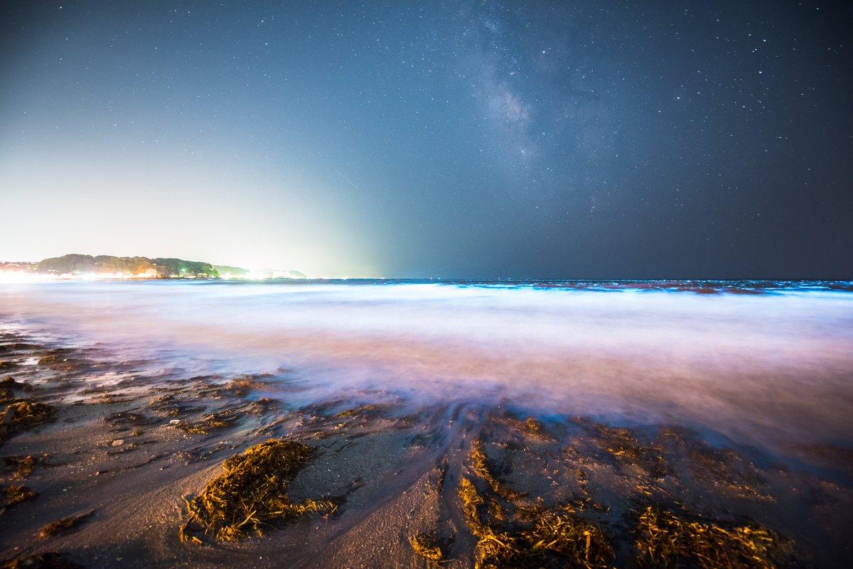 鎌倉の由比ヶ浜で 夜光虫と天の川と流星の共演。小さいですが幾つか流星が視野に入ってくれました。#夜光虫 #天の川 #みずがめ座η流星群