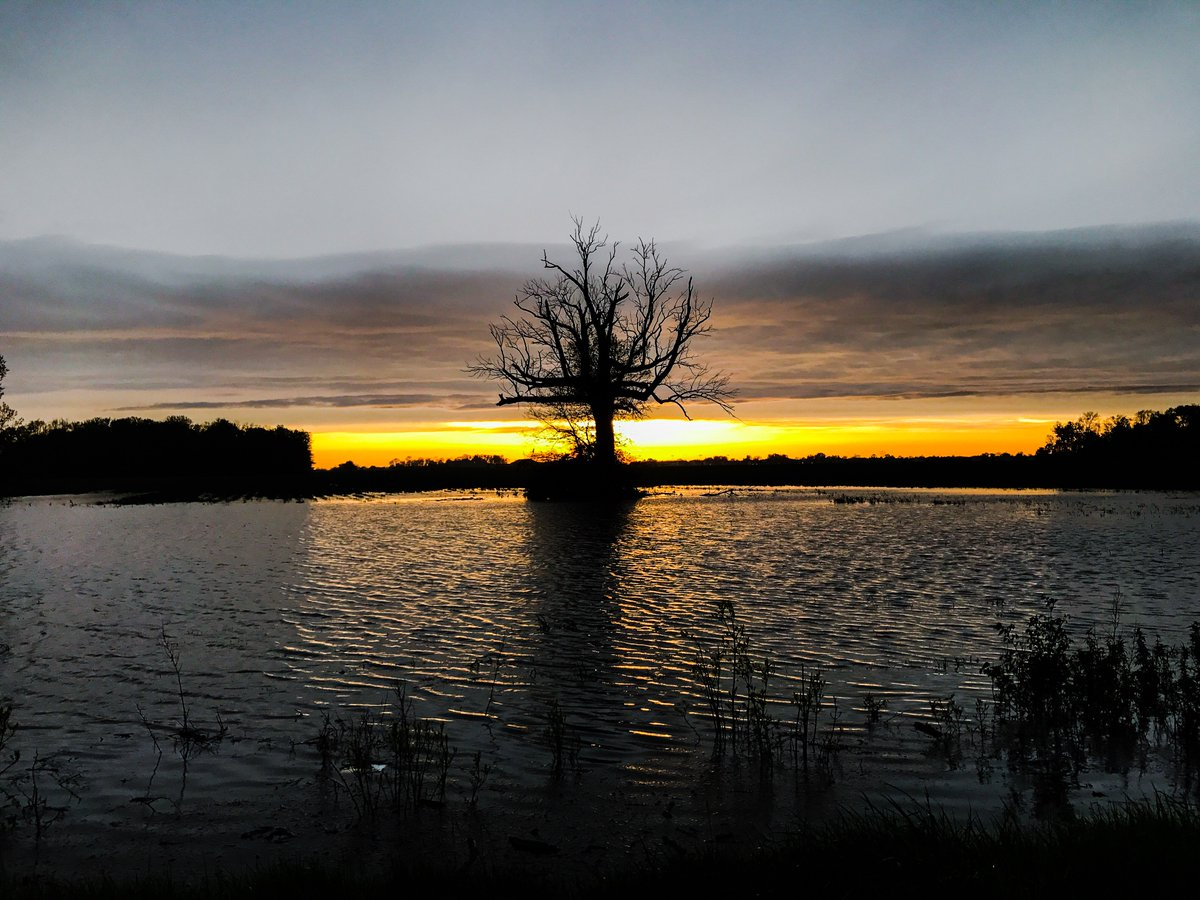 Flooded field in Findlay, OH at sunset. @Ryan_Wichman https://t.co/0pOxrJNOCs