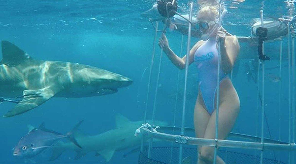Actriz Porno Es Mordida Por Tiburon video actriz porno mordida tiburón filmaba película erótica