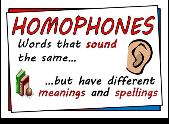 Image result for homophones