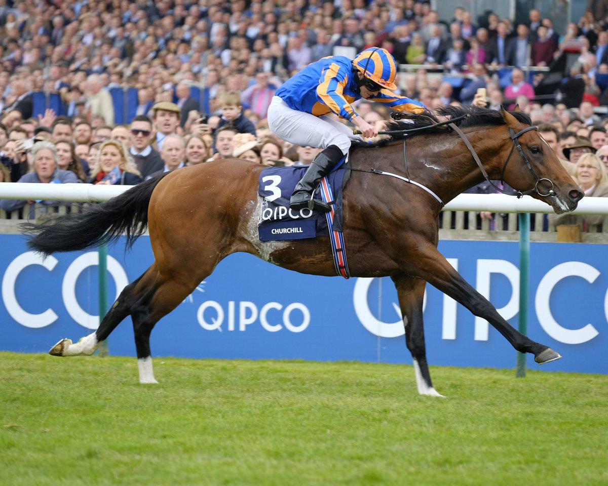Image result for churchill 2000 guineas