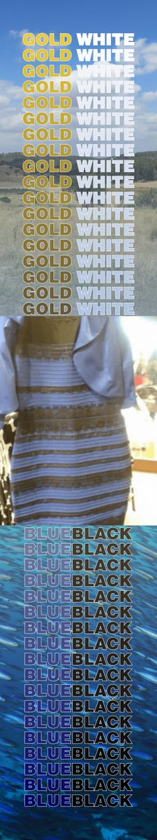 Kyle Hill On Twitter Your Brain Adjusts What Color An Object