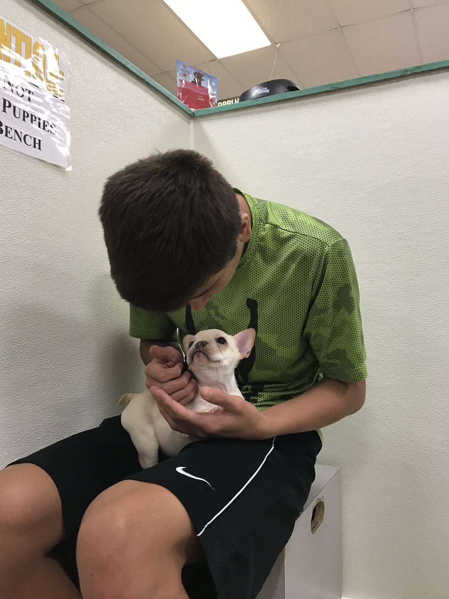 For free puppies in oklahoma