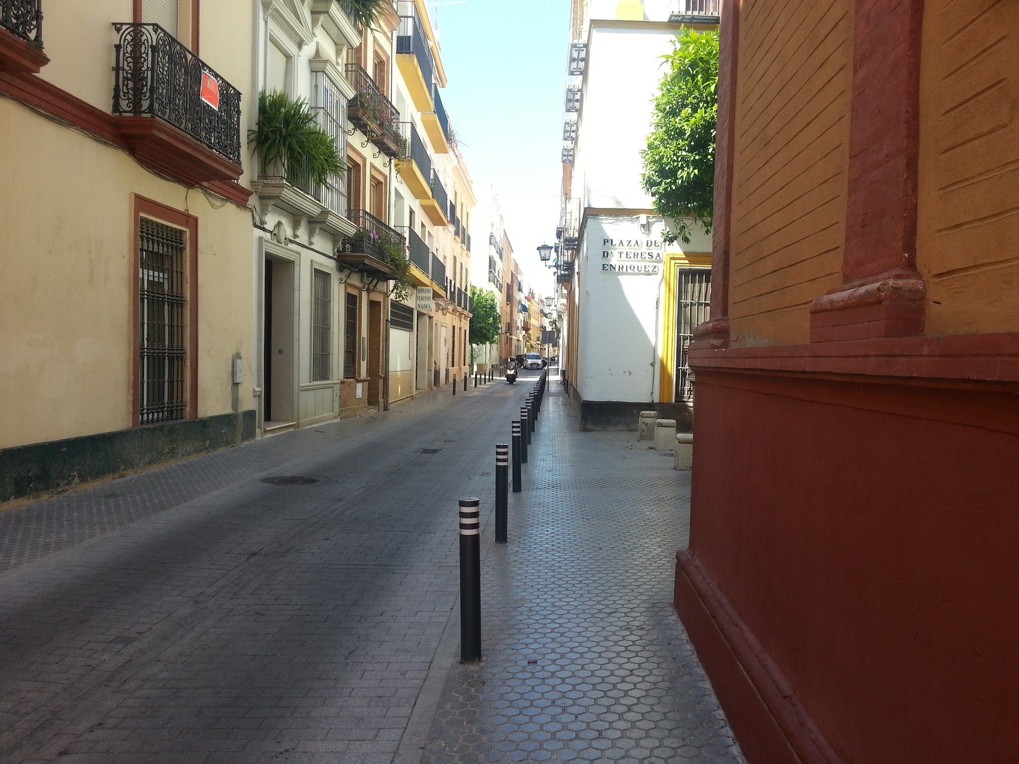 they do love a bollard in Seville. One way to stop pavement parking https://t.co/rShNcKHy36