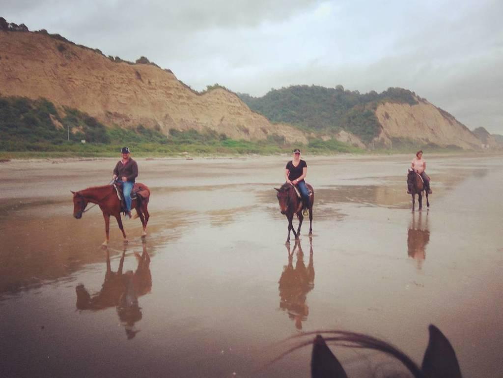 #cabalgata #canoa #beachlife Great day for a ride!<br>http://pic.twitter.com/vVqa4sfdl8