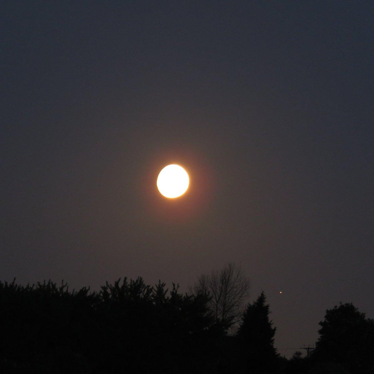 Eventos en el cielo: eclipses y  otros fenómenos planetarios  - Página 13 C_Rm-2NXoAAQCG5