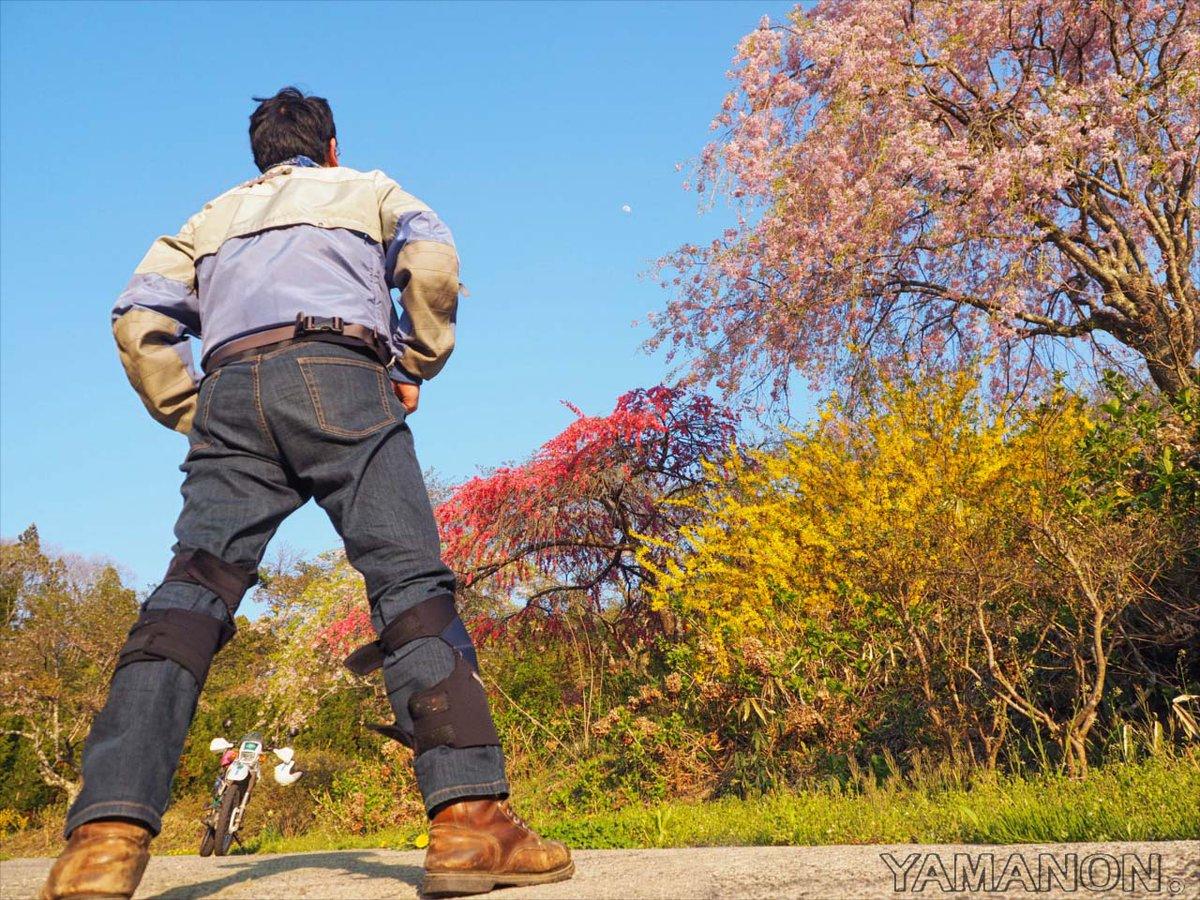 今年の桜ツー終了。また来年!