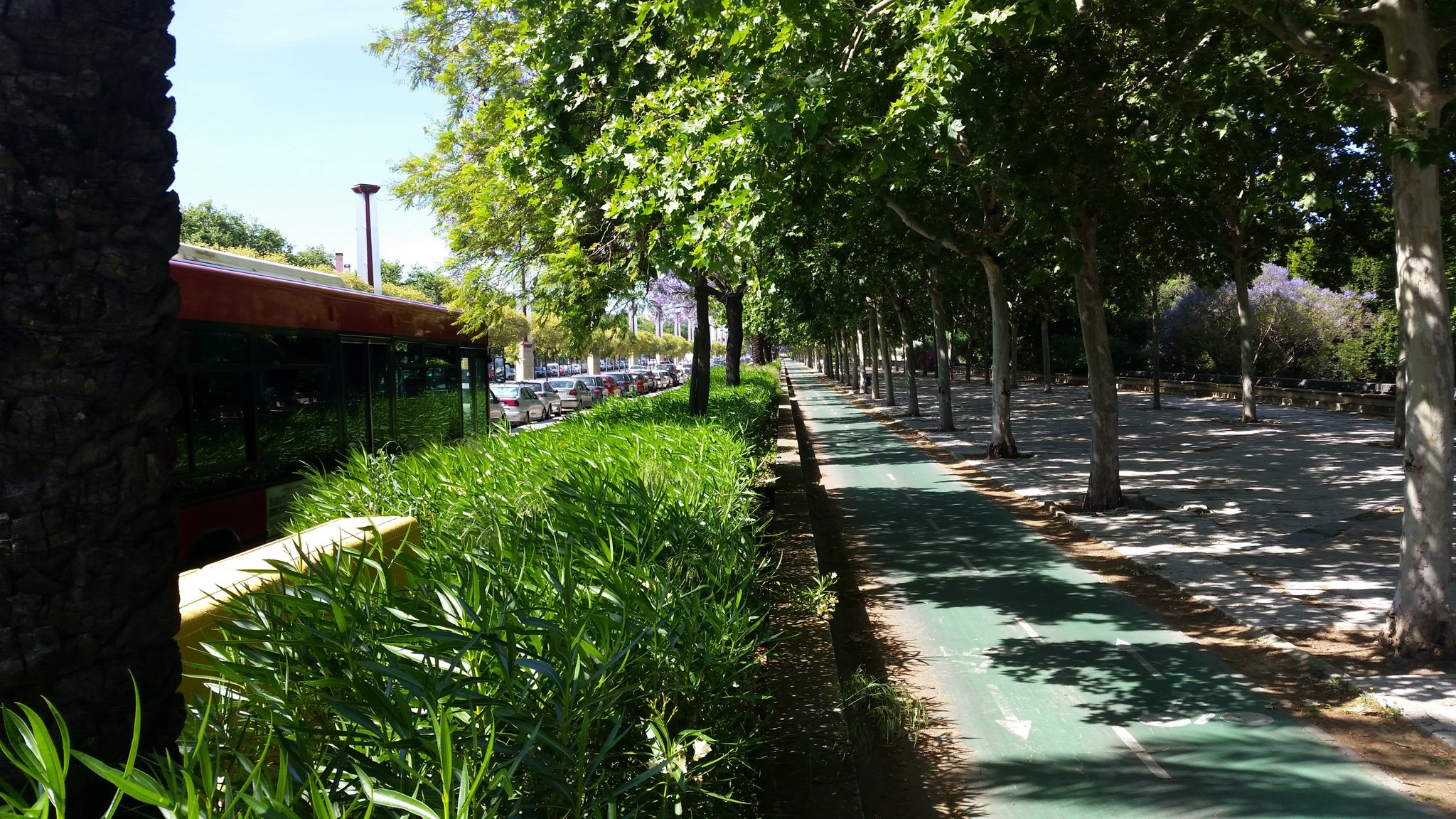 Impressive road layout #5GoMadinSeville: footway-trees-bike lanes-hedge-bus lane-parking-motors. A busy road feels safe and peaceful. https://t.co/KeCkqPqf8g
