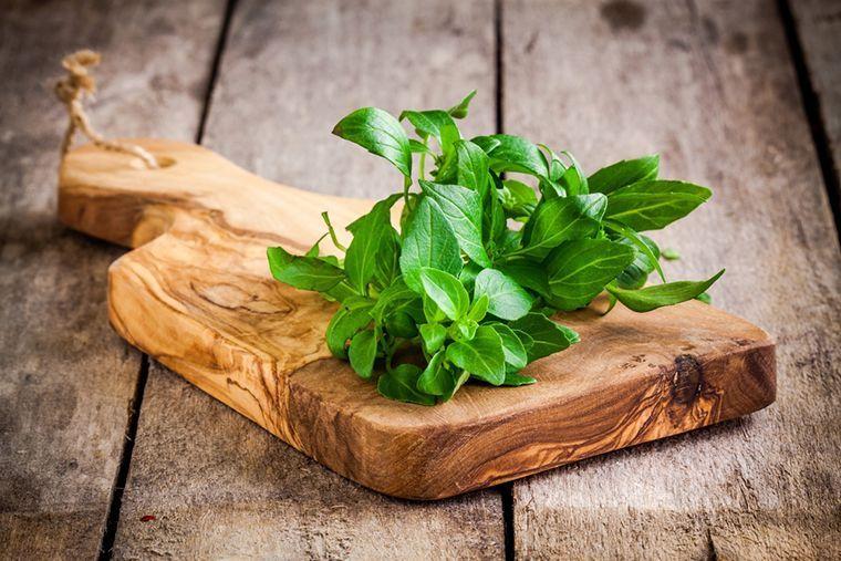 Basilico, notevoli proprietà antidolorifiche e benefiche per tutto il corpo