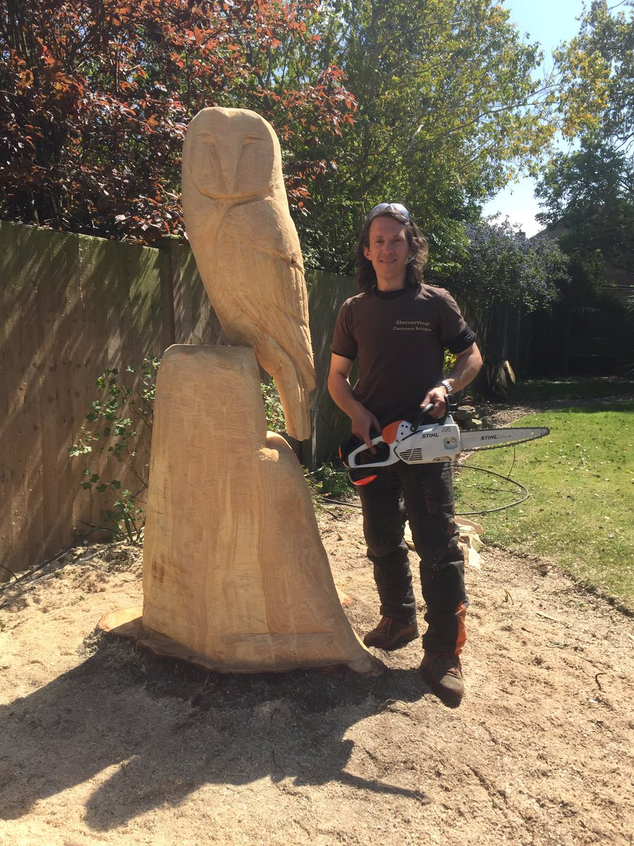 Carving chainsaw carve owl for wood sale u ericsonwilkinson