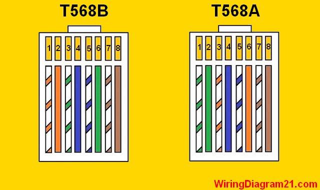 586b wiring diagram cat6 cable diagram  u2022 mifinder co