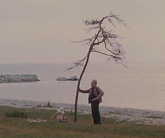 """Sacrifice Status: Martin Kessler On Twitter: """"Sacrifice (1986) Dir. Andrei"""