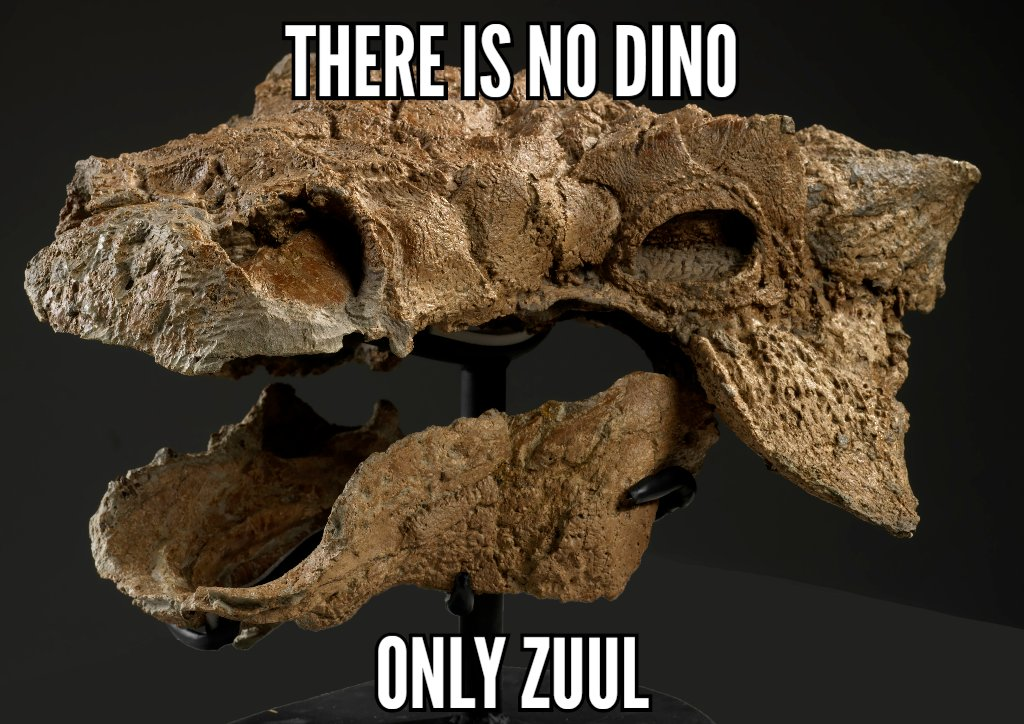 Introducing a new species of armoured dinosaur: Zuul, the Destroyer of Shins! https://t.co/krwT4JA21h https://t.co/7kJt2YOtf7