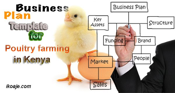 Poultry farming business plan template ikoaje sample poultry business template wajeb Choice Image