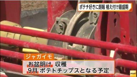 o_monday 【朗報】ポテチ復活へ 北海道ではジャガイモの植えつけが最盛期を迎えている 収穫は9月頃の予定