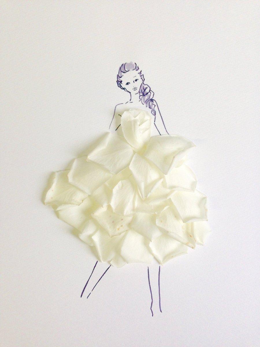 白い 言葉 の 枯れ 花 た バラ