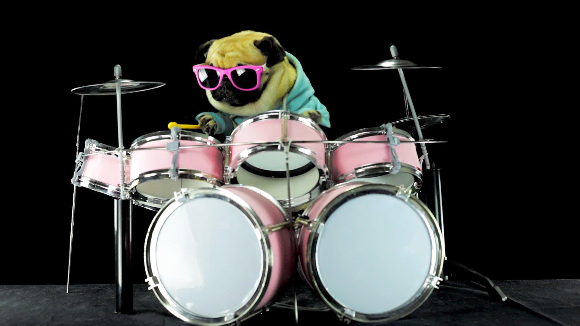 Thumbnail for DIYMC 5.10.17 - Drums, Baby!