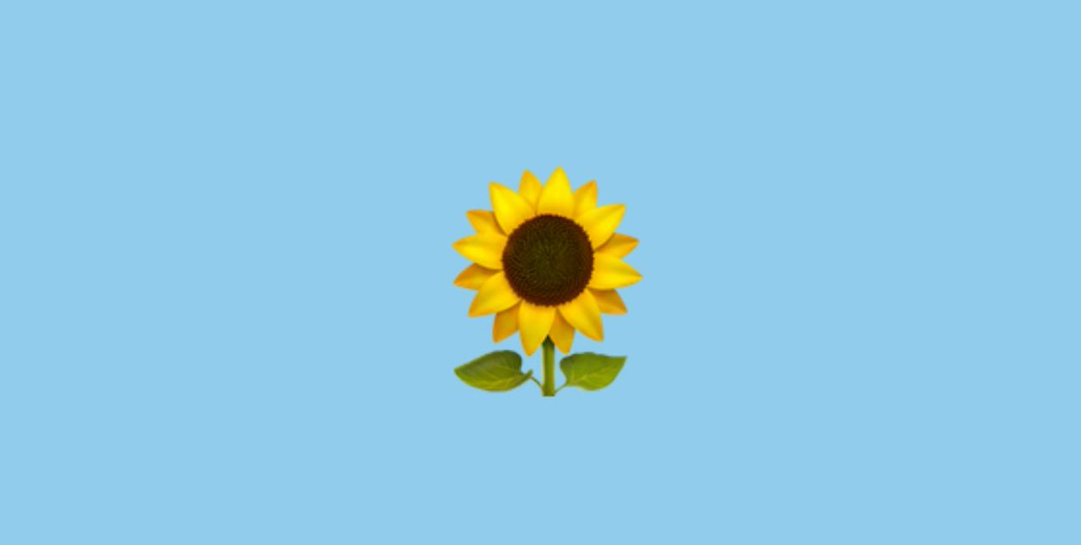 Green Party Us On Twitter Did You Know The Sunflower Is An