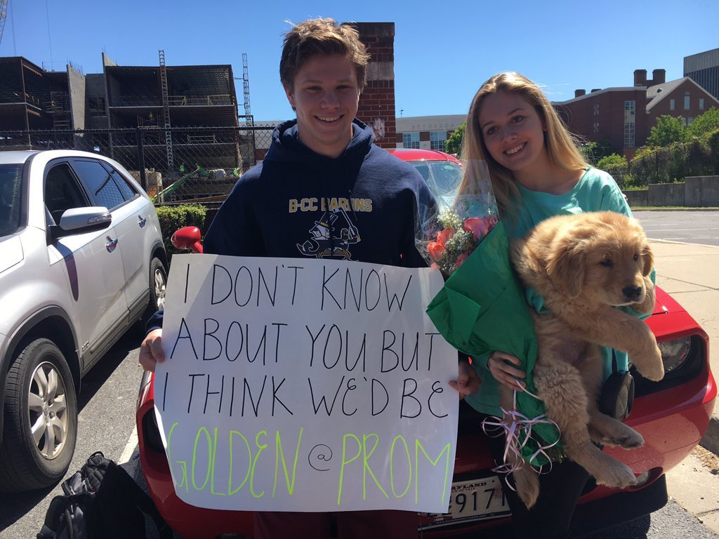 Bcc Promposals On Twitter His Puppy Dog Eyes Probably Won Her Over