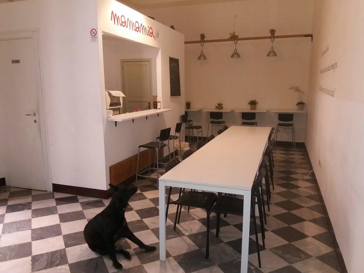 our #mascotte #maka also wants to have a #breakfast at 5 pm  #dog #mamamia #relax #holiday #fun #specialguest #hostel #palermo<br>http://pic.twitter.com/Bi9ZQ7XhEo