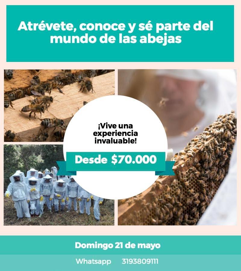 ¿Aburrido en la ciudad?  Ven y vive la @RutadelaMielCol  este 21 de mayo #Refugiodeabejas #Quibee #rutadelamiel