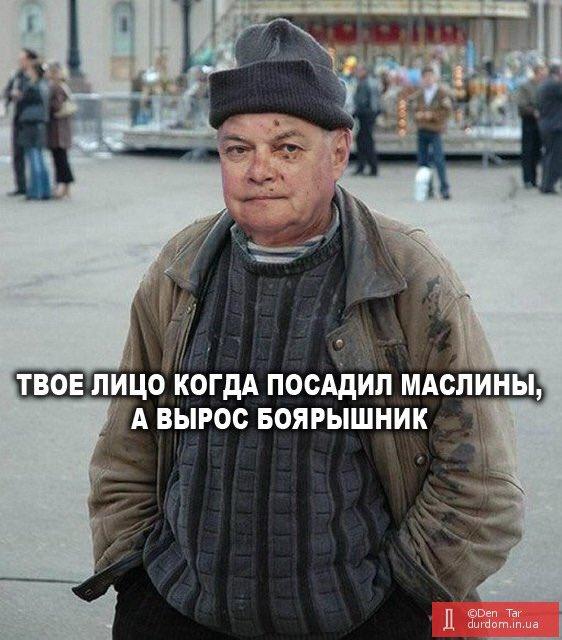 Ассоциация польских журналистов призвала Россию немедленно освободить Сущенко - Цензор.НЕТ 7142