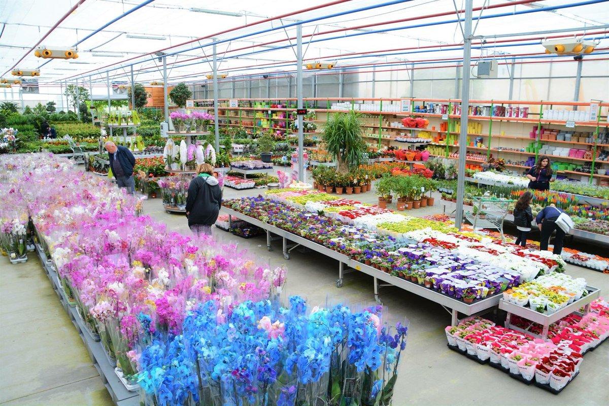 Оптовые рынки цветов адреса