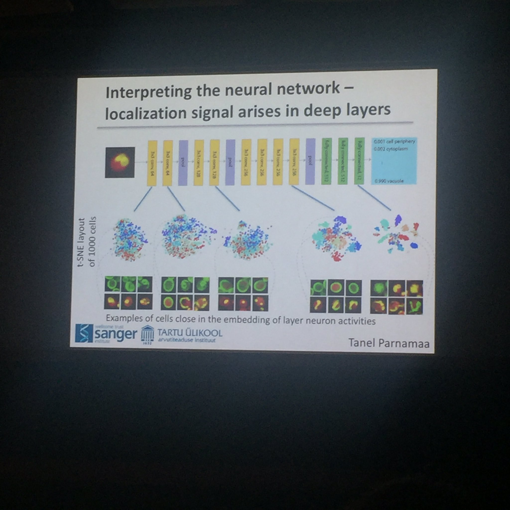 LP: understanding the individual layers in the dnn and classification per layer #bog17 https://t.co/3WKf7jjIOO