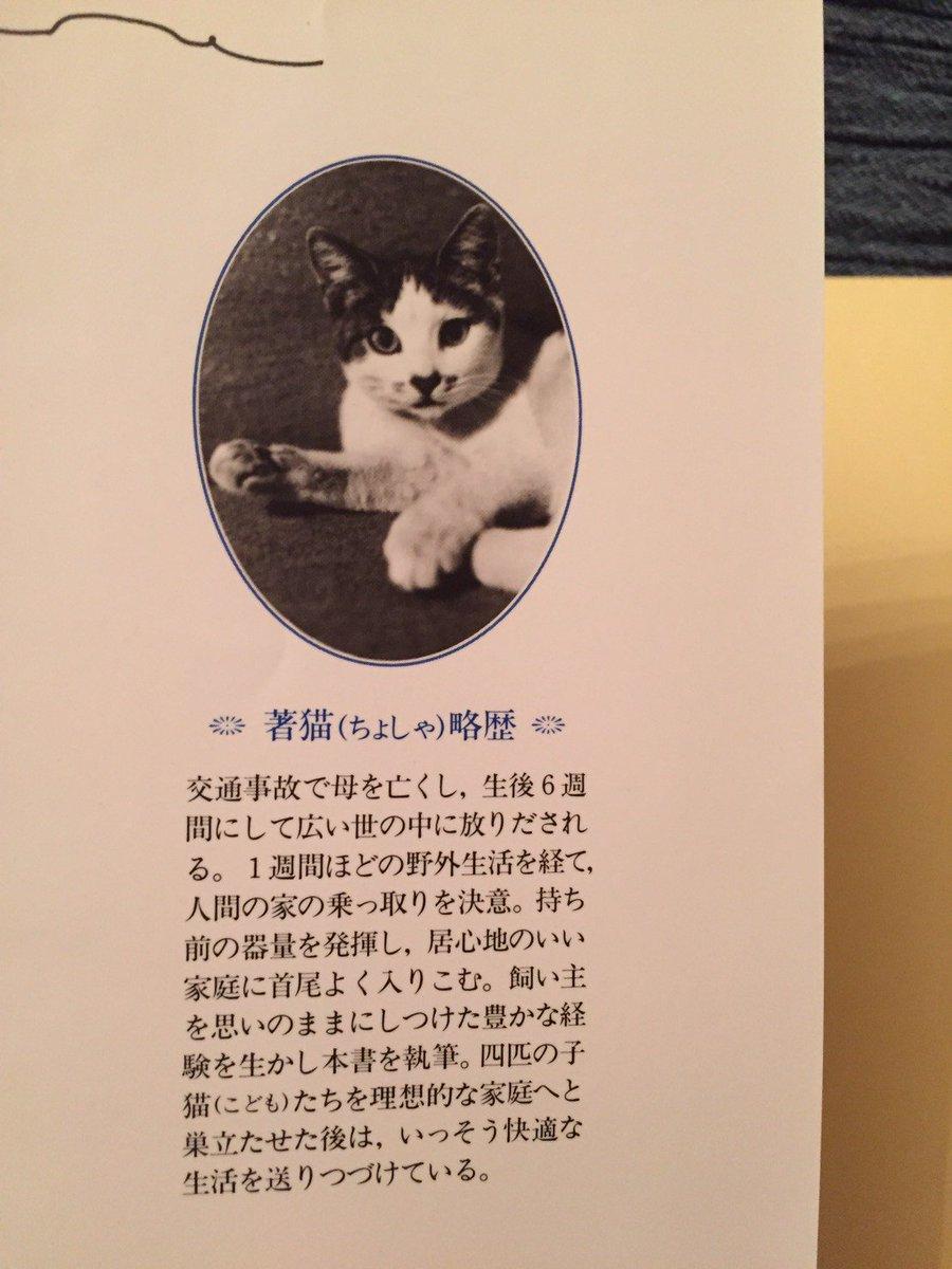 書いたのは猫!?ブックオフで見つけた本に「人間の家を乗っ取るためにはどうすれば良いか」が書いてあったwww