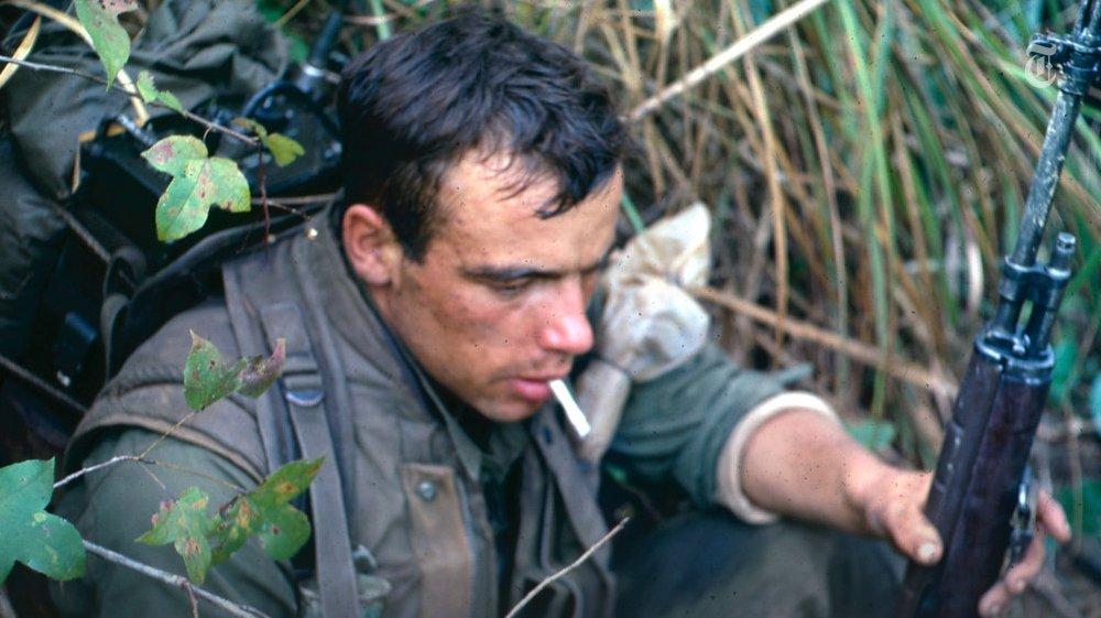 Marine Vietnam : Tigers giant centipedes ambushes life