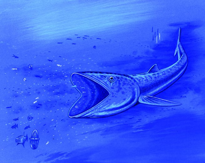 Fossil of 92 million year old fish, 1 of 3 now known in the world, will come to Denver
