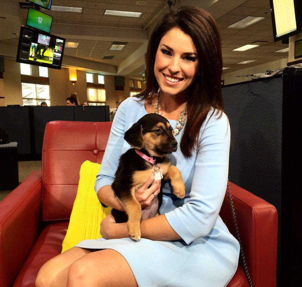 Help find forever homes for adorable pups like Sweet Pea at the @DDFL - to donate call: 303-577-2080 9NEWS