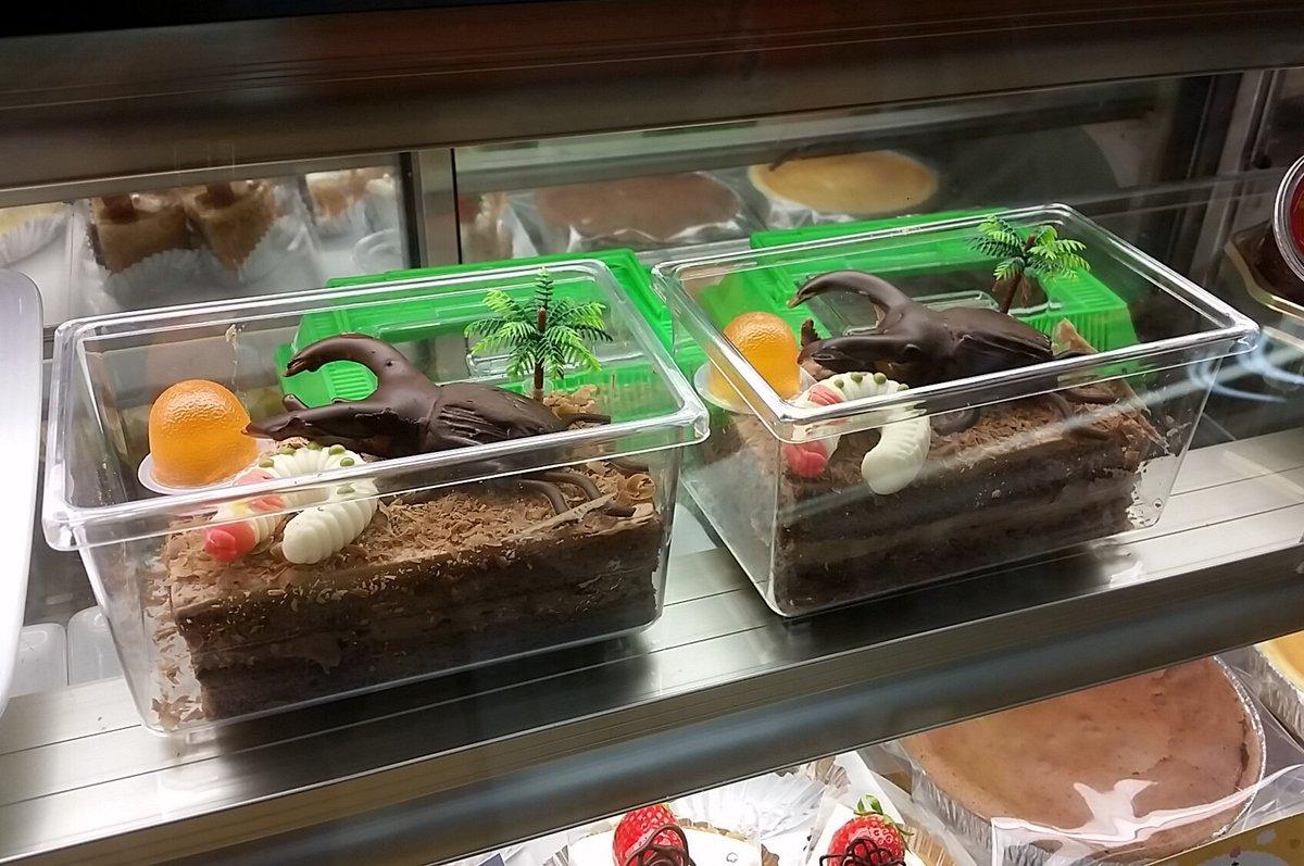 高崎市南大類町のお菓子屋「まちのくまさん」のショーケースに並ぶ、カブトムシ…のチョコレートケーキです。バレンタインデーにいかがでしょうか? (藤) https://t.co/aeFOXU8zNm