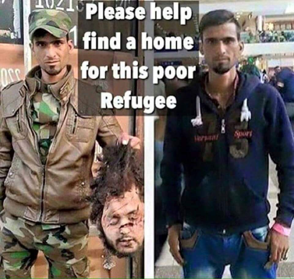 Image result for pics of find a home for refugees
