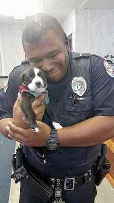 Cop in viral puppy photo grew up in the North Bay