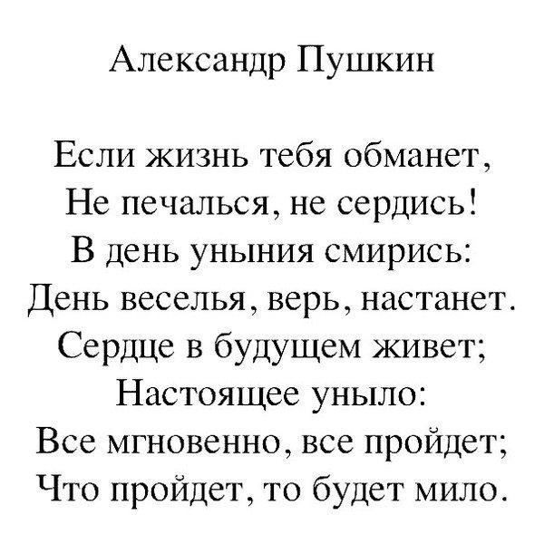 спектр концептуальные стихи пушкина либры представлены