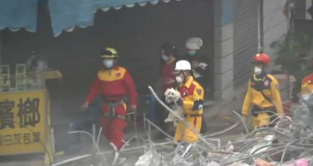 4 days after the quake hit Taiwan rescuers pulled this little puppy from the rubble. 9newsmornings