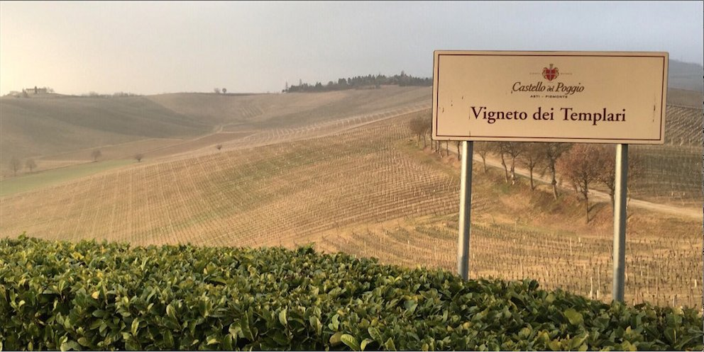 Pruning time in #Piedmont. Pruning is an essential step in growing healthy grapes. #Winewednesday https://t.co/yMtVlVqDjF