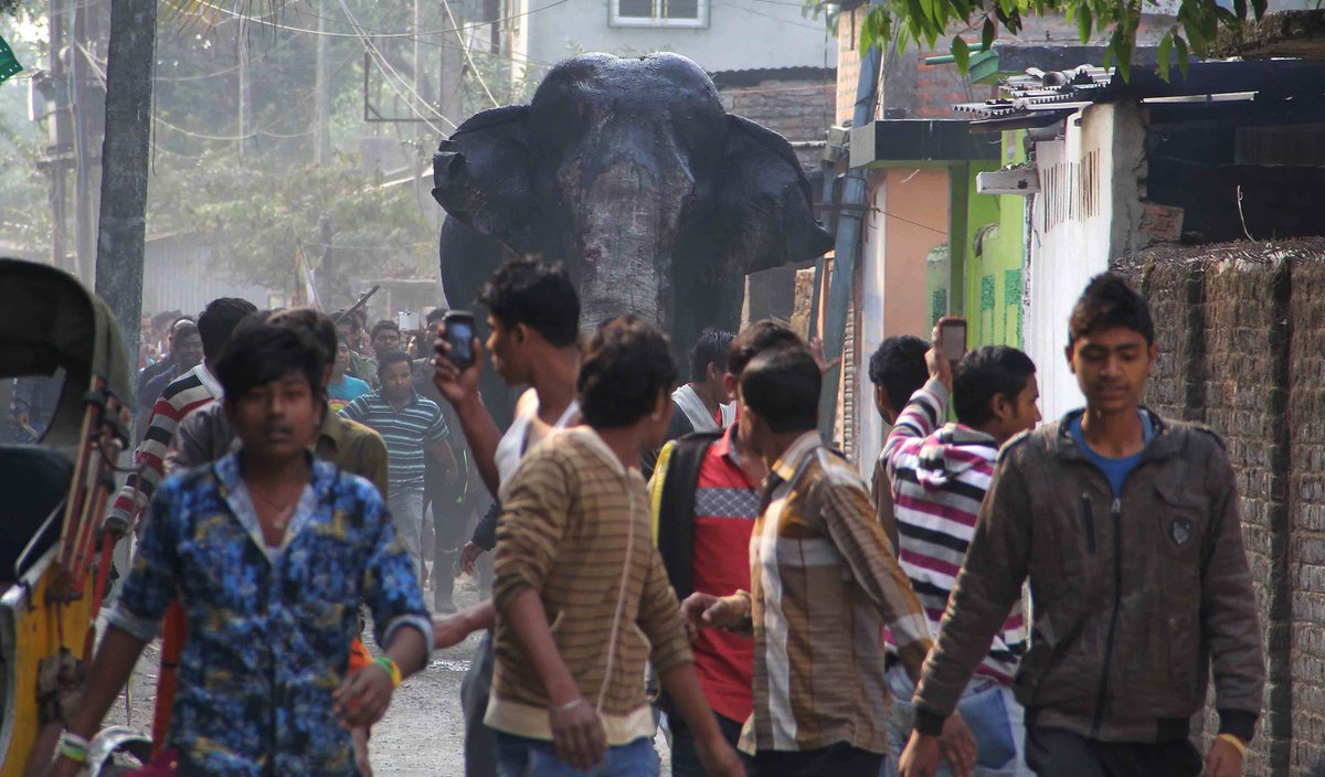 Elephant smashes homes, vehicles, sends residents running in panic in Indian town.