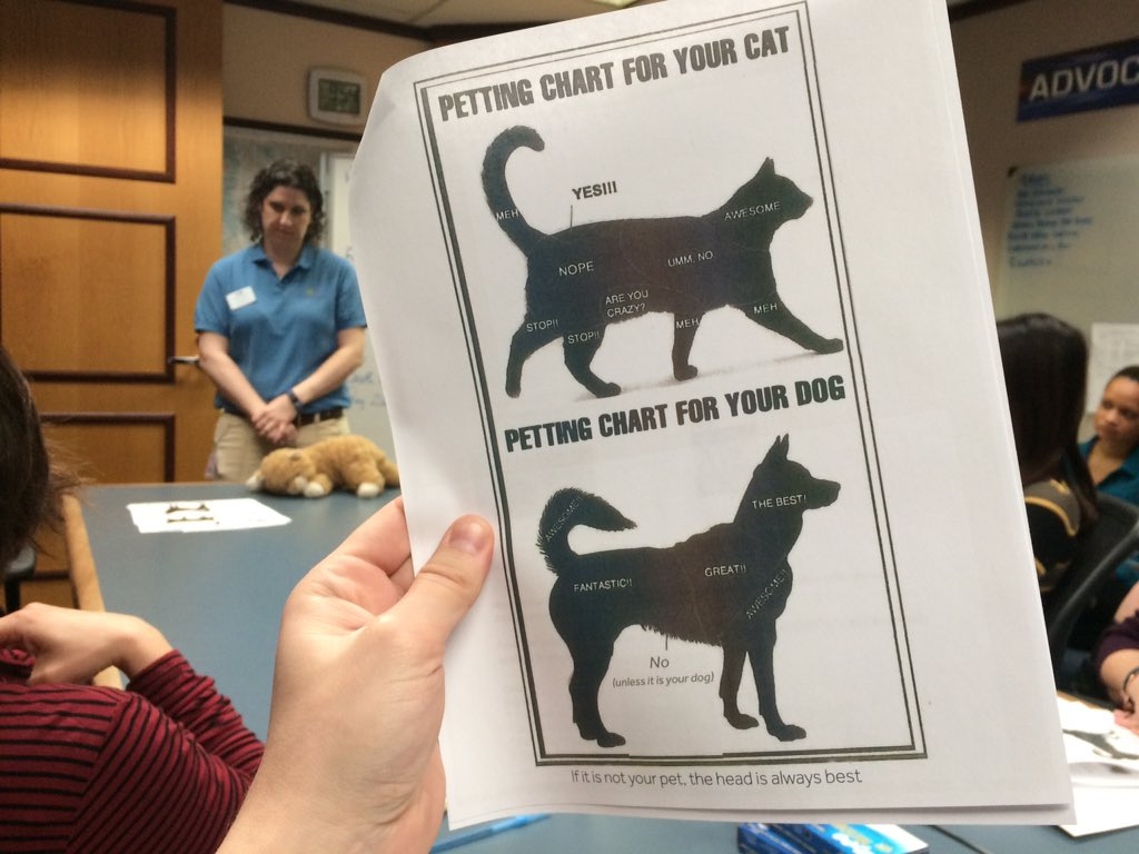 That dog/cat petting chart I've seen on FB is no joke. @DDFL animal handling trainer using it in class at 9NEWS