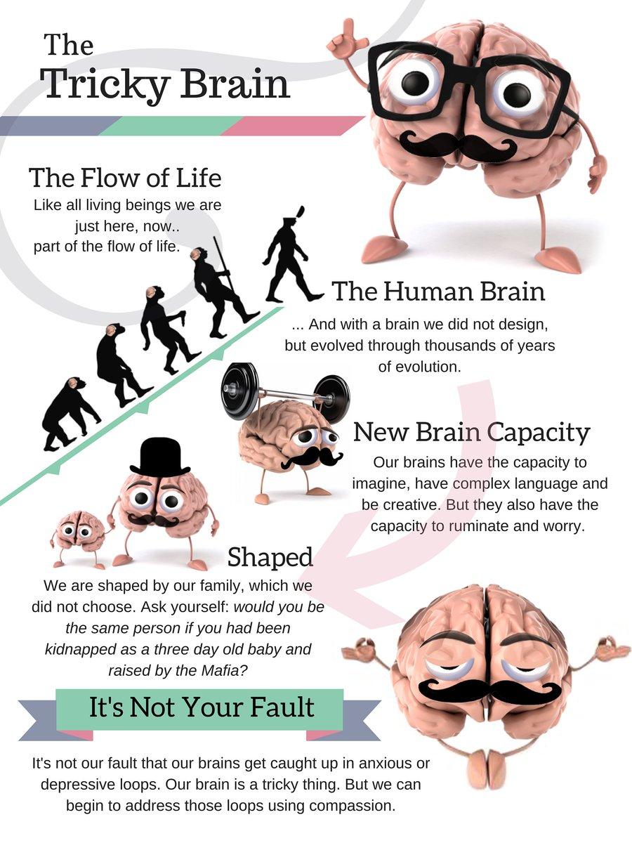 "James N. Kirby on Twitter: ""My new Tricky Brain"