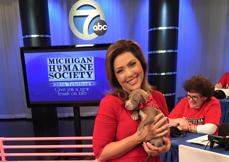TODAY: Michigan Humane Society @mhumane hosts annual Valentine's Telethon-- DONATE HERE