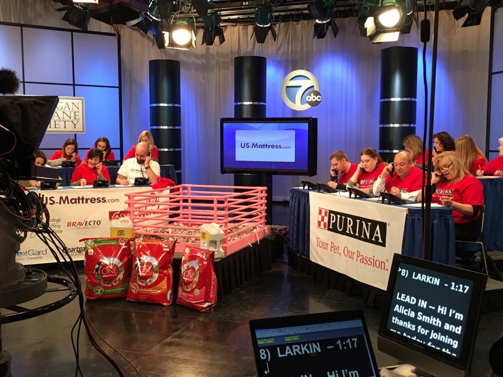 Behind the scenes at the Michigan Humane Society Telethon. earlyrisers