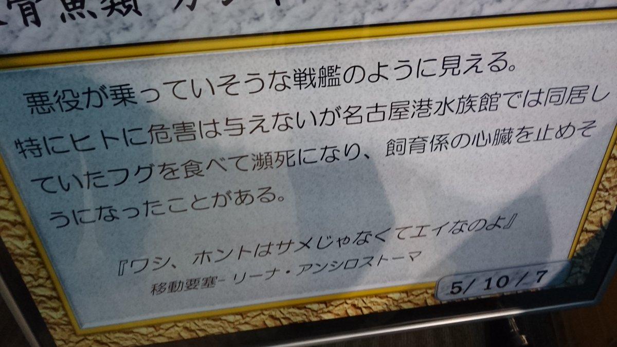 名古屋港水族館のシノノメサカタザメの説明書きがずるい pic.twitter.com/EVegFVUIWE