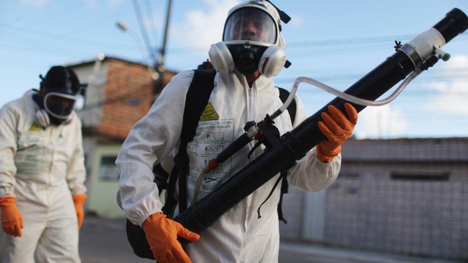 Virus Zika, pericolo allarme anche in Italia